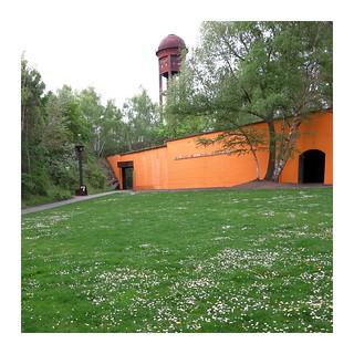 Ausgewilderte Farbe / Orange Returned to the Wild