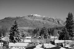 Snow day in black and white. (Zorro1968) Tags: snowday blackandwhite photos604 snow weather bcstorm explorebc explorecanada lifeincanada pacificnorthwest yourshotphotographer vancouverisawesome globalbc ctvvancouver mountseymour