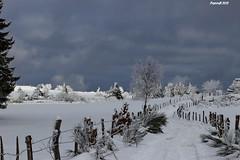 Sous la neige - Fence and snow HFF (BPBP42) Tags: fence neige snow paysage landscape landschaft