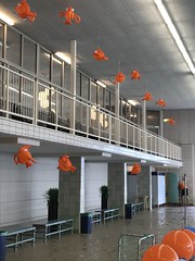 ballondecoratie hangend vis