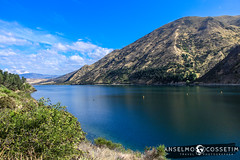 Road Trip New Zealand 2018 (Anselmo Cossetim) Tags: httppercasedescubrasecombr roadtrip viajar mochilao novazelandia christchurch queenstown auckland seals alpaca