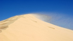 Windy day on the Sand Dunes-Lake Mungo NSW (darrylkirby) Tags: campingtrips australia outbacknewsouthwales