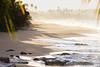 Salitre (Alexis A. Bermúdez) Tags: beach manati puertorico atlantic caribbean shoreline seascape playa caribe palms rocks sand water nature 150600mm f563 dg os hsm contemporary