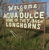 Welcome to Agua Dulce Sign (Agua Dulce, Texas) (courthouselover) Tags: texas tx southtexas nuecescounty aguadulce citywelcomesigns