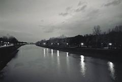 Sunset in Arno (michele.palombi) Tags: river arno florence tuscany film 35mm cascine darkroom olympus om1 analogic kodak trix 400asa