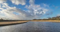 Lymington River (Bruce Clarke) Tags: tollbridge olympus landscape winter water outdoor solent trees lymingtonriver m43 estuary 714mmf28 river clouds newforest hampshire sky omdem1 lymington reeds tidal reedbeds