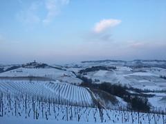 IMG_3691 (burde73) Tags: vietti barolo castiglione falletto villero langhe tasting wine nebbiolo cantina cellar
