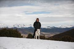 En el Parador (Alberto Lacasa) Tags: lena jaca chenia mountains outdoor snow pirineos trees 50mm arboles pet pyrenees parador dog oroel aragon nevada trekking nieve mountain