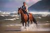 Riding a Seahorse (♞Jenny♞) Tags: cavalier darrinmanni coast riding morgangelding galloping