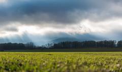 a ray of sunshine (kamsli) Tags: sunshine ray clouds chełmiec wałbrzych poland polen