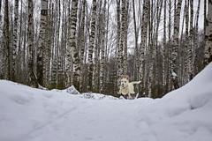 Levitation (Staropramen1969) Tags: humor animals dog winter forest walk tiere hund wald spaziergang animales perro invierno bosque caminar