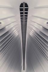 OculusWTC-8703 (lean0021) Tags: oculus world trade center nyc new york city newyorkcity