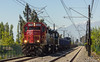 Fepasa y un super lirios (Maxi_Blyat) Tags: railroad rail railway railfans rancagua railways tren train trenes ferrocarril