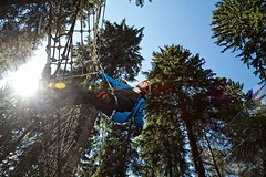 #saferoller continuous lifeline system means 100% safety for ropes courses #belay #safety http://j.mp/2AGtq0v (Skywalker Adventure Builders) Tags: high ropes course zipline zipwire construction design klimpark klimbos hochseilgarten waldseilpark skywalker