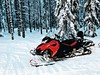 Dettagli in rosso e nero (lauratintori) Tags: blackandred red black tree trees ice snow bikeronthesnow snowmobile safari detail details iphone7photography iphonephoto picture pic photography photo ph lauratintoriph
