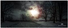 DECEMBER 2017  NGM_6927_3569-1-2222 (Nick and Karen Munroe) Tags: snow snowfall snowstorm snowy winter wintertrees winterstorm wintry wintery winterwonderland weather weatherevent heartlakeconservationarea hike heartlakeconservation heartlake canada colour color colors caledon beauty brampton beautiful blue brilliant nikon nickmunroe nickandkarenmunroe nature nickandkaren nick nikond750 d750 1424 1424f28 nikon1424f28 munroedesignsphotography munroedesigns munroe munroephotography karenick23 karenick karenandnickmunroe karenmunroe karenandnick karen landscape ontario outdoors ontariocanada sun sunlight sky clouds cloudy cloud skies