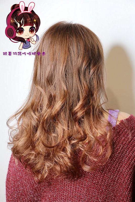 WHY fashion hair salon088