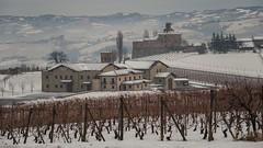 Langhe, vineyards and castles. (rinogas) Tags: italy piemonte langhe unesco barolo lamorra winter snow castle vineyard rinogas