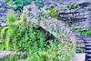Robert H. Treman State Park 19 - Trail Top: Lucifer Falls (Adventure George) Tags: acdseephotostudio august colorimaging creek enfieldcreek fingerlakes flora gorge ithaca luciferfalls naturalworld nature newyorkstate nikond750 northamerica nystatepark outdoor photogeorge photoshoot riparianecosystem roberttremanstatepark summer us usa westernnewyork newyork unitedstatesofamerica