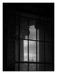 Par la fenêtre du Grand Palais (objet introuvable) Tags: blackandwhite bw noiretblanc nb paris fenêtre window mood cadre lumixgx8 lumière contrast panasonic street town