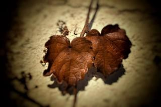 La mentira y el engaño tienen fecha de caducidad. Al final todo se descubre. Al mismo tiempo, la confianza se muere para siempre...
