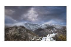 _ATP4671 (anahí tomillo) Tags: nikon d7500 nikond7500 nikkor naturaleza nature nieve niebla snow fog montaña mountain paisaje landscape asturias spain españa europa europe