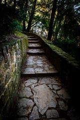 Sur le chemin // 2018 // © F.Lombardo (F.Lombardo) Tags: pont chemin couleur couleurs colors sombre dark way gard french photography photographe