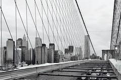 Walk on by (Axle Zhang) Tags: blackandwhite blackwhite bnwphotography bnw alonetime jungle city walk leica life brooklynbridge bridge nyclife newyork nyc