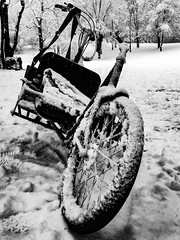 let´s go for a winter ride... (genelabo) Tags: winter long john lastenrad fahrrad bike velo bicycle ride feldmochinger see munich münchen black white cargo schwarz weiss monochrome lightroom iphone snow schnee