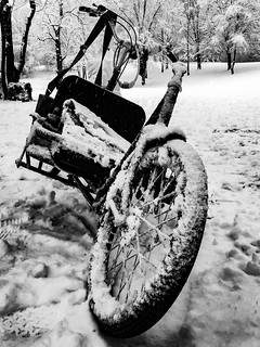 let´s go for a winter ride...