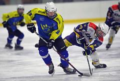 Eishockey_Meistertitel_1