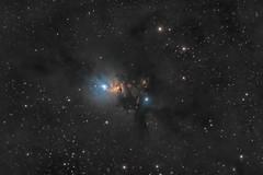 NGC 1333 region in Perseus (pete_xl) Tags: ngc1333 astrometrydotnet:id=nova2391896 astrometrydotnet:status=solved