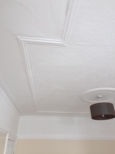 plastercore.co.uk Ceiling Before-1