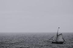 (Laetitia.p_lyon) Tags: bretagne saintmalo bateau mer boat sea brittany breizh illeetvilaine manche noiretblanc nb blackandwhite bw bnw monochrome monochromatic laetitiaplyon