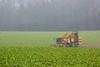 last sugar beets (Fotos aus OWL) Tags: rüben roden zucker zuckerrüben landwirtschaft agriculture roder ropa