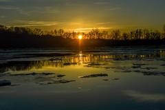 """Sunrise Over The Delaware River"" (Beangrau12) Tags: dogwood2018 week4 creativequietmoment sunrise horizon reflection sheetsofice trees landscape water river floating calmness quiet nikon3200 tamron16300mm"