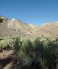 Ridgecrest_2017 87 (dever_brett) Tags: california ridgecrest desert nissansentra