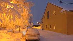 IMG_4373 (Mr Thinktank) Tags: raureif frost