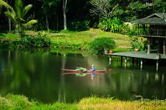 Life of a farmer (Emu Alim) Tags: chiangmai thailand farmer lifestyle green lake waterbody sony a9
