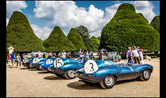 Jaguar's legendary 1-2-3-4-6 finish at the 1957 Le Mans 24 Hours race (Laurent DUCHENE) Tags: concoursofelegance hamptoncourtpalace 2017 car automobile automobiles jaguar dtype typed xkd