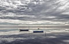 Com un mirall als Alfacs, _DSC3688 (Francesc //*//) Tags: mirall espejo mirror miroir deltadelebre deltadelebro núvols nubes nuages clouds mar elsalfacs paisaje paisatge paysage landscape marina