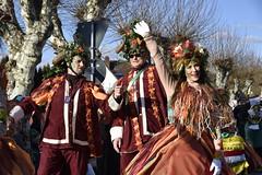 DSC7986 (Starcadet) Tags: dieburg dibborsch fastnacht dibojerfastnacht karneval prty brauchtum parade umzug fastnachtszug fastnachtdienstag fasching fasnet kostüme verkleiden südhessen cosplay spas humor clowns