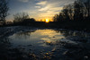 Sunset at Niddapark 2/6 (martin.emmert) Tags: 2018 shadows frankfurt landscape lightandshadow frankfurtammain nature water germany puddle february mud niddapark perspective ffm hessen deutschland de