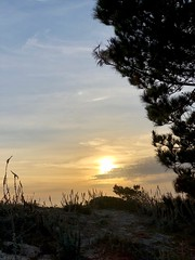 Sunset at Asilomar Beach (skylarprimm) Tags: ✓ beach california monterey nature pacific pacificocean sky sunset