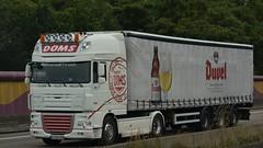B - Doms >Duvel< DAF XF 105 SSC (BonsaiTruck) Tags: doms duvel daf lkw lastwagen lastzug truck trucks lorry lorries camion camiones camionhoes