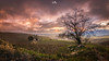 El atardecer más hermoso (Juan A. Pérez) Tags: ronda malaga andalucía atardeceres sunsets cloud nubes montañas paisaje árbol cortijo