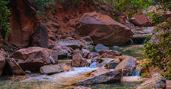 Virgin River in Zion National Park (jonfromtahoe) Tags: zionnp
