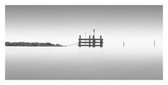 Connected (Marco Maljaars) Tags: jetty pier seascape longexposure le blackandwhite marcomaljaars mood minimalism water bird pole sky black white bw