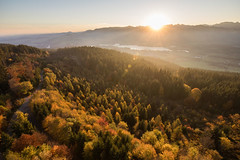 La Gruyère - Gibloux / Ref.01209 (FRIBOURG REGION) Tags: schweiz switzerland suisse fribourgregion automne autumn herbst randonnée wandern walking prealps préalpes voralpen antennedugibloux nature natur outdoor
