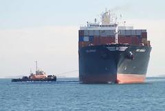 Freedom (jelpics) Tags: mscanishar msc freedom tug tugboats commercialship merchantship massport containership boat boston bostonharbor bostonma harbor massachusetts ocean port sea ship vessel